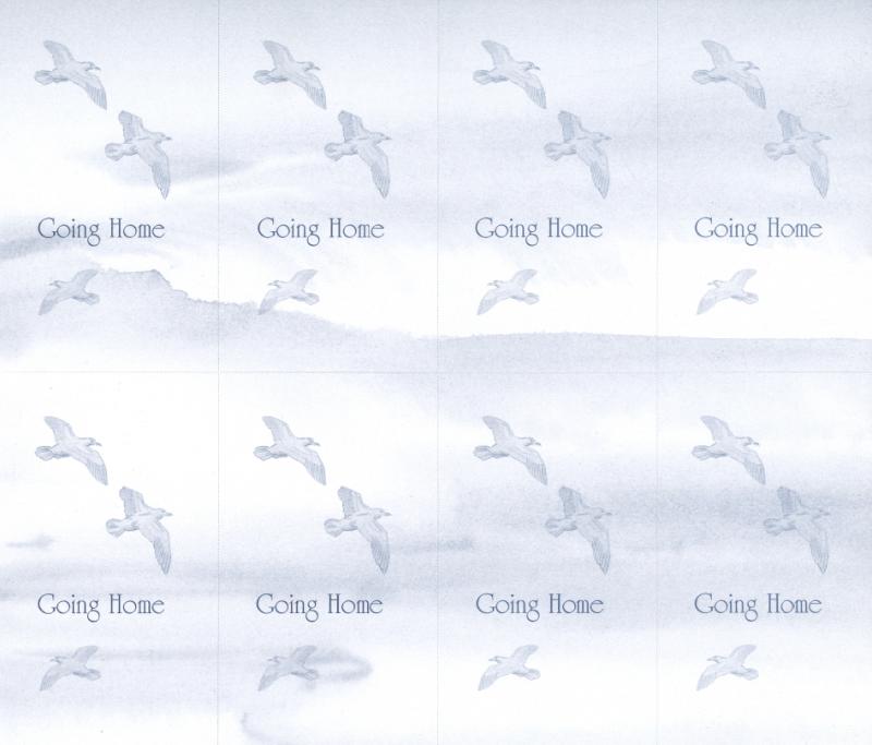 Going Home / Doves