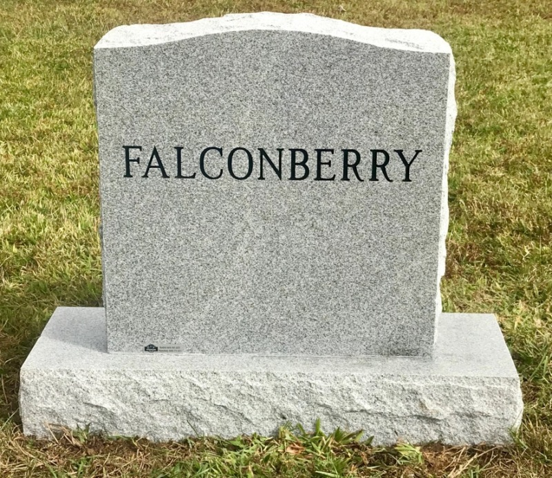The Monument of Larry Falconberry