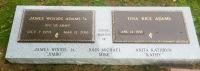 The Monument of James Woods & Tina Rice Adams