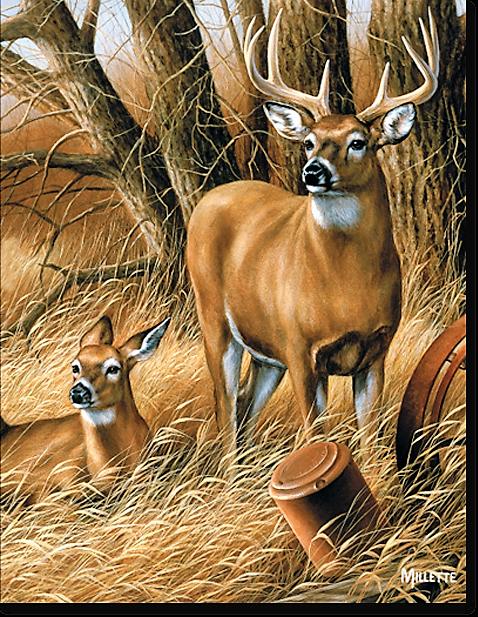 Rustic Retreat Deer Register Book Package