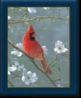 Northern Cardinal Register Book Package