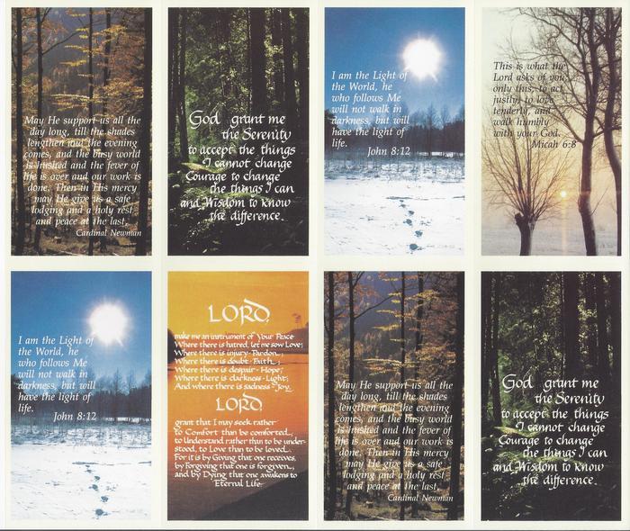 Nature Series Set